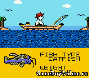Black Bass – Lure Fishing